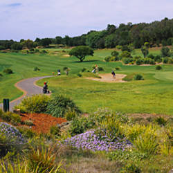 Person in a golf course, Eagle Ridge Golf Course, Mornington Peninsula, Victoria, Australia