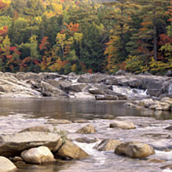 USA, New Hampshire, White Mountains National Forest, River flowing through the wilderness
