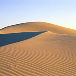 Panoramic View Of Sand Dunes In The Desert, Cadiz Dunes, Mojave Desert, USA