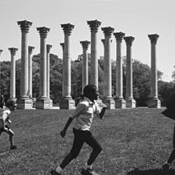 Four children playing in a park, Capitol Columns, National Arboretum, Washington DC, USA