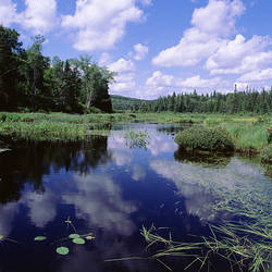 USA, New York State, Adirondack Mountains, Tupper Lake