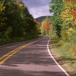 USA, Michigan, Upper Peninsula, Porcupine Mountain State Park, South Boundary Road, Road crossing through the forest