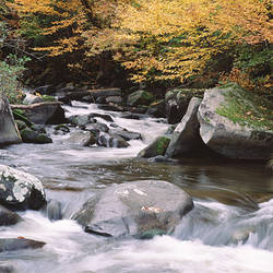 USA, Vermont, East Barre, Water flowing through rocks