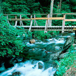 USA, Vermont, Granville Gulf State Reservation, Creek flowing through Moss Glen Falls