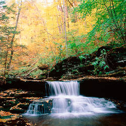 USA, Pennsylvania, Benton, Ricketts Glen State Park, Waterfalls at Glen Natural Area