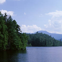 USA, New York, Adirondack State Park, Adirondack Mountains, Trees along Franklin falls pond