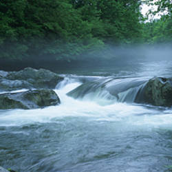 USA, North Carolina, Tennessee, Great Smoky Mountains National Park, Little Pigeon River, River flowing through a forest