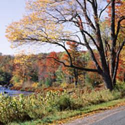 USA, New York, Adirondack State Park, Adirondack Mountains, Road along Moose river
