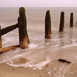 Posts On The Beach, Spurn, Yorkshire, England, United Kingdom
