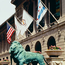 Statue of lion in front of a museum, Art Institute of Chicago, Grant Park, Chicago, Cook County, Illinois, USA