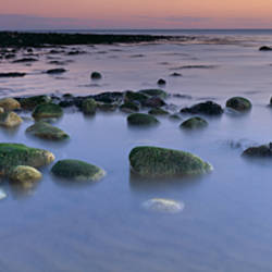 Stones In Frozen Water, Flamborough, Yorkshire, England, United Kingdom