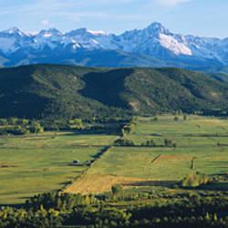Field in front of mountains, Sneffels Range, Colorado, USA