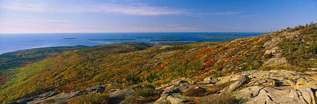Rock formations along the sea, Mount Desert Island, Acadia National Park, Maine, USA