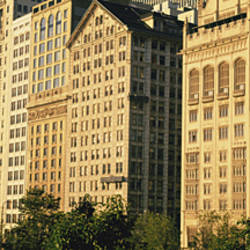 Michigan Avenue Architecture Chicago IL