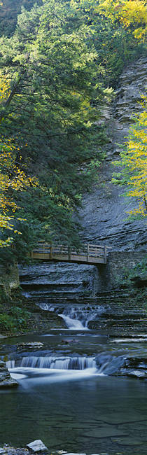 Bridge near a waterfall, Stony Brook State Park, Dansville, New York State, USA