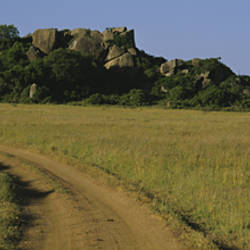 Road passing through a grassland, Simba Kopjes, Road Serengeti, Tanzania, Africa