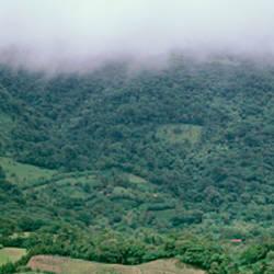 Reserva Biologica Bosque Nuboso Puntarenas Province Costa Rica
