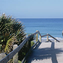 Plants On Both Sides Of A Boardwalk, Caspersen Beach, Venice, Florida, USA