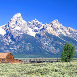 Barn On Plain Before Mountains, Grand Teton National Park, Wyoming, USA