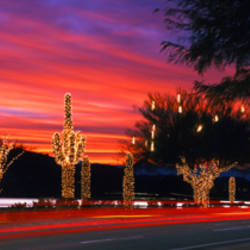 Christmas, Phoenix, Arizona, USA