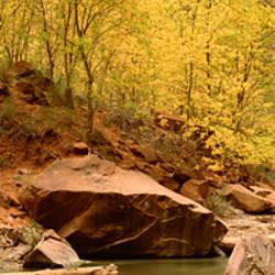 River passing through rocks, Virgin River, Zion National Park, Utah, USA