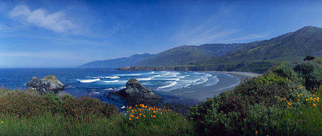 High angle view of a beach, Sand Dollar Beach, Big Sur, California, USA