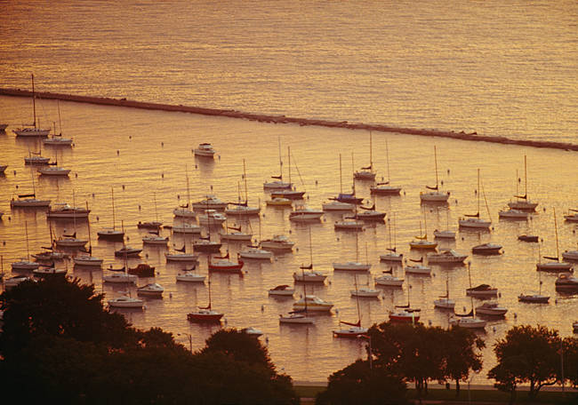 Sailboats in the sea, Grant Park, Chicago, Cook County, Illinois, USA