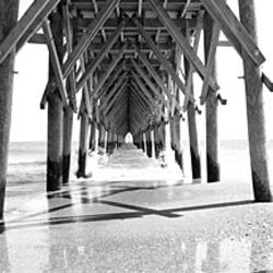 Wooden post under a pier on the beach, North Carolina, USA