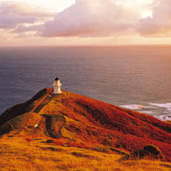 Lighthouse On Cape Reinga, Northland, New Zealand