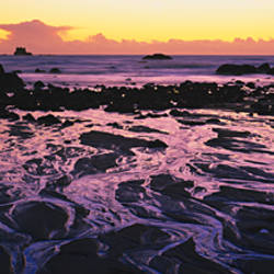 Beach at sunset, Del Norte County, California, USA