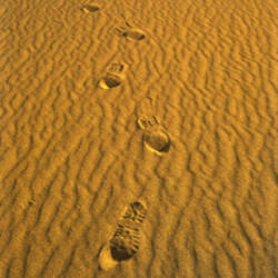 Footprints, Death Valley National Park, California, USA