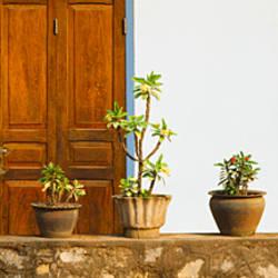 Potted plants outside a house, Luang Phabang, Laos