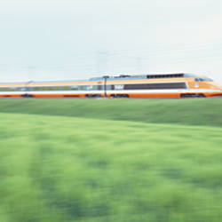 TGV High-speed Train passing through a grassland