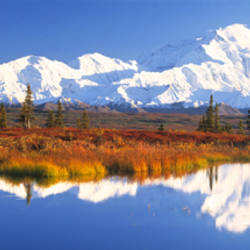 Pond, Alaska Range, Denali National Park, Alaska, USA