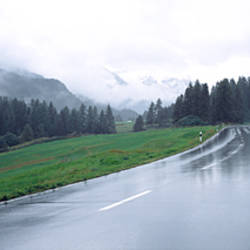 Wet highway passing through a forest, Austria