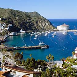 Santa Catalina Island CA