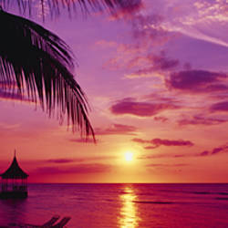 Sunset, Palm Trees, Beach, Water, Ocean, Montego Bay Jamaica