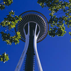 Space Needle Maple Trees Seattle Center Seattle WA USA