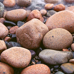 Close-up of rocks, Acadia National Park, Maine, USA