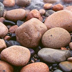 Close-up of rocks, Acadia National Park, Maine, USA