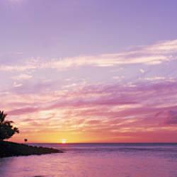 Silhouette of trees on the beach, Kee Beach, Kauai, Hawaii, USA