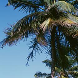 Puerto Rico, San Juan, Condado Area