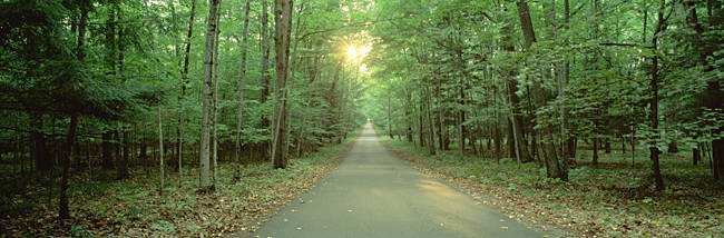 USA, Wisconsin, Door County, Road running through a forest