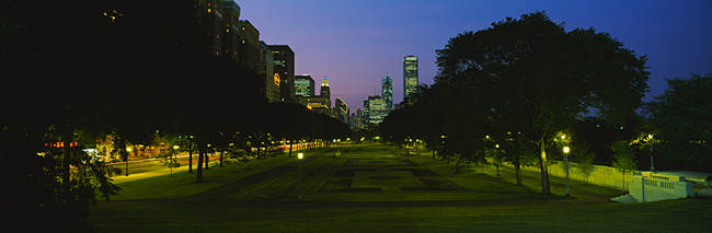 Silhouette of trees along the street in a cityscape, Grant Park, Chicago, Illinois, USA