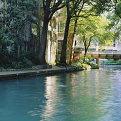 Bridge across a river, San Antonio River Walk, San Antonio, Texas, USA