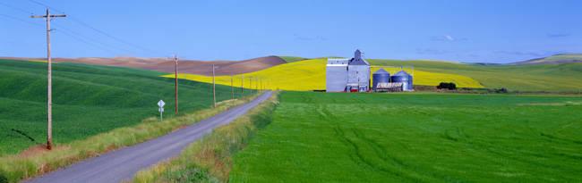 Granary Fields, Whitman County, Washington State, USA