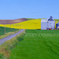 Granary Fields, Whitman County, Washington State, USA