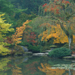 The Japanese Garden Seattle WA USA