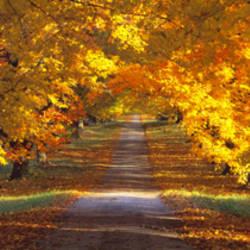 Road, Baltimore County, Maryland, USA