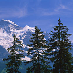 Mountains covered with snow, Swiss Alps, Wengen, Bernese Oberland, Switzerland